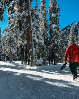 Cali Quests | Road Trips and Adventure Travel Packages. Last minute spring break travel deals